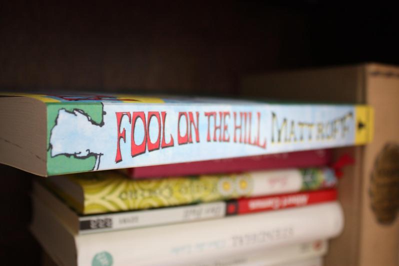 Das Romancover von Fool on the Hill in einem Bücherregal